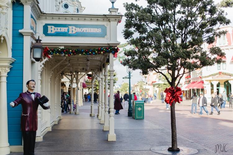 Disneyland noel-10