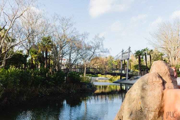 Disneyland noel-117