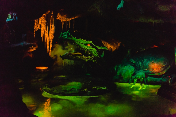 Disneyland noel-28