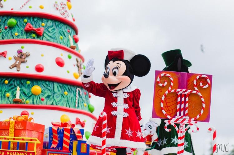 Disneyland noel-36