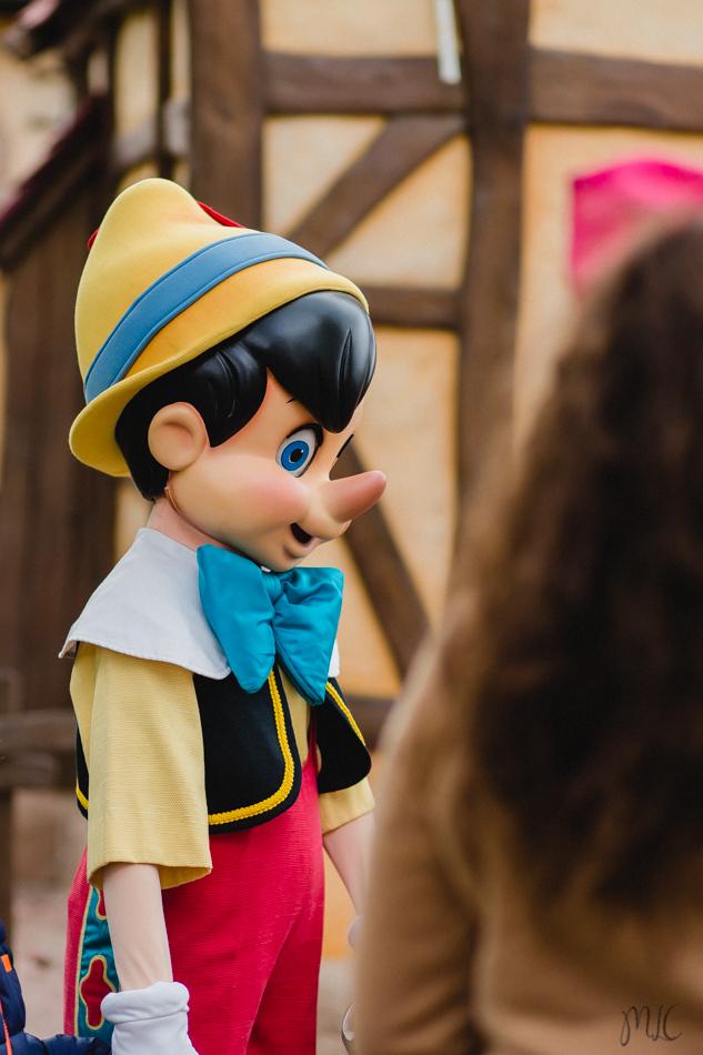 Disneyland noel-70