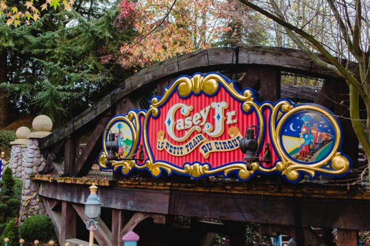 Disneyland noel-76