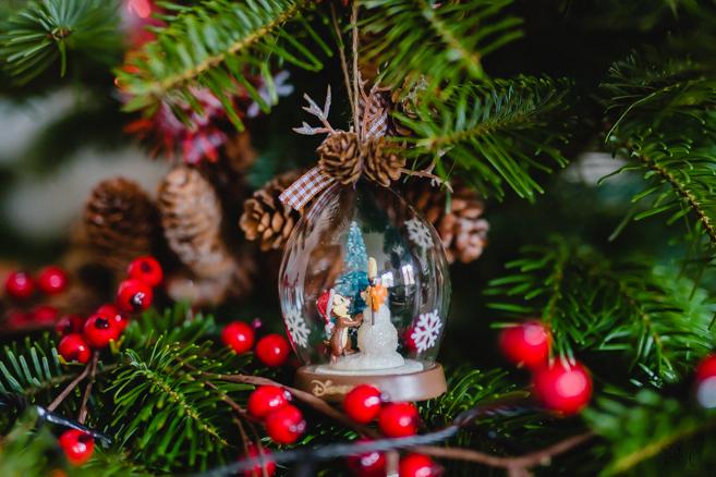 sapin de noel christmas photographe-6