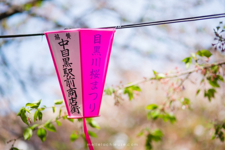 Photographe gwendoline noir Nakameguro japon tokyo sakura-8