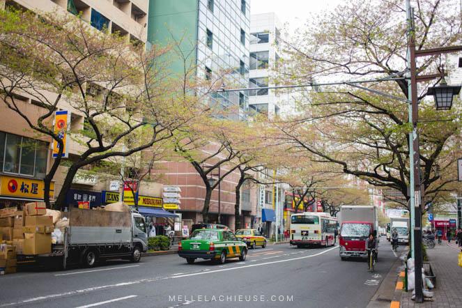 Photographie Japon Nakano araiyakushi-1