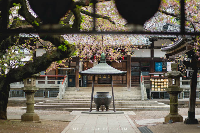 Photographie Japon Nakano araiyakushi-10