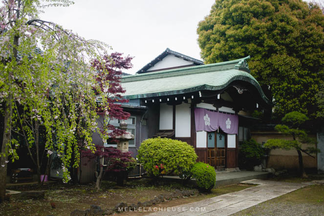 Photographie Japon Nakano araiyakushi-4