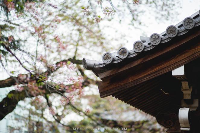 Photographie Japon Nakano araiyakushi-9