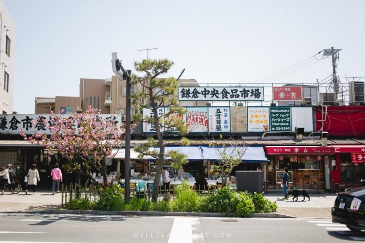 kamakura-blog-japon-voyage-tokyo-buddha-2