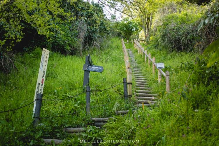 kamakura-blog-japon-voyage-tokyo-buddha-38