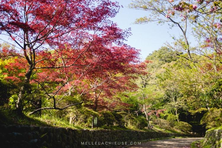 kamakura-blog-japon-voyage-tokyo-buddha-44