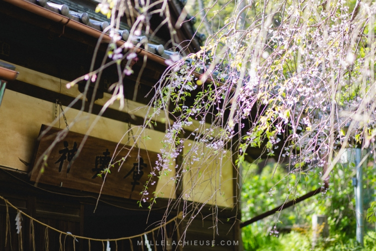 kamakura-blog-japon-voyage-tokyo-buddha-45