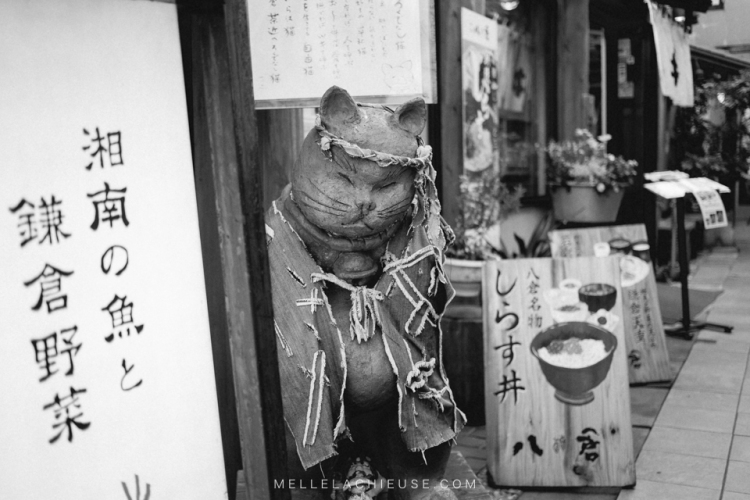 kamakura-blog-japon-voyage-tokyo-buddha-58