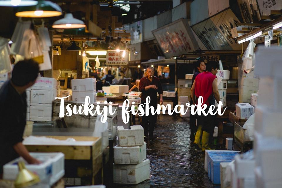 photographe-lyon-japon-tsukiji-marche-aux-poissons-japan-fishmarket-1-2