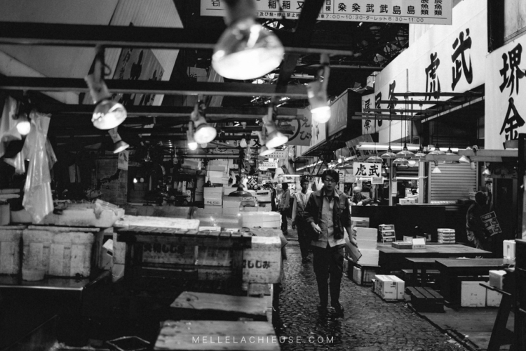 photographe-lyon-japon-tsukiji-marche-aux-poissons-japan-fishmarket-10
