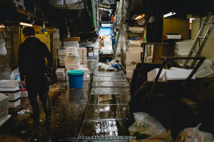 photographe-lyon-japon-tsukiji-marche-aux-poissons-japan-fishmarket-15