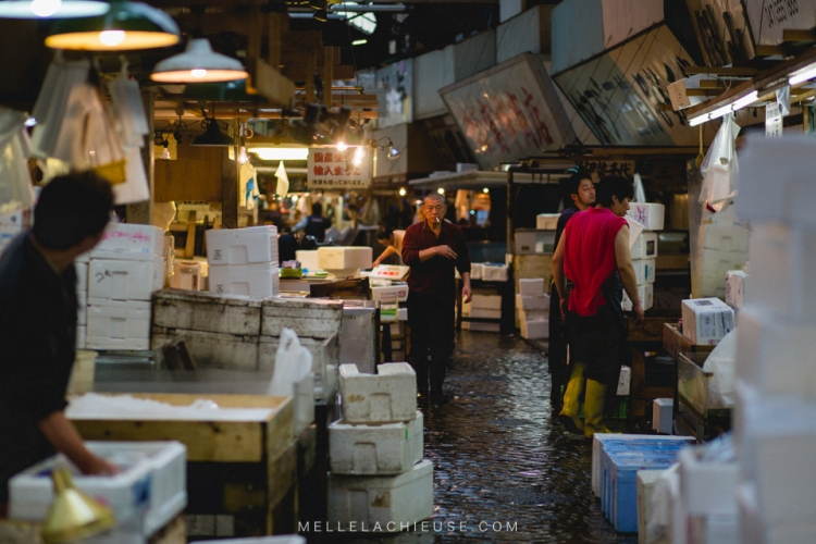 photographe-lyon-japon-tsukiji-marche-aux-poissons-japan-fishmarket-23