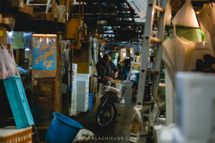photographe-lyon-japon-tsukiji-marche-aux-poissons-japan-fishmarket-26