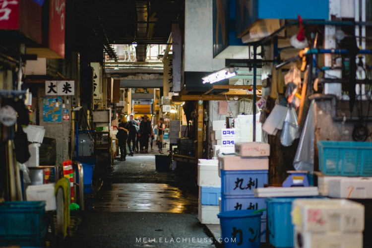 photographe-lyon-japon-tsukiji-marche-aux-poissons-japan-fishmarket-4