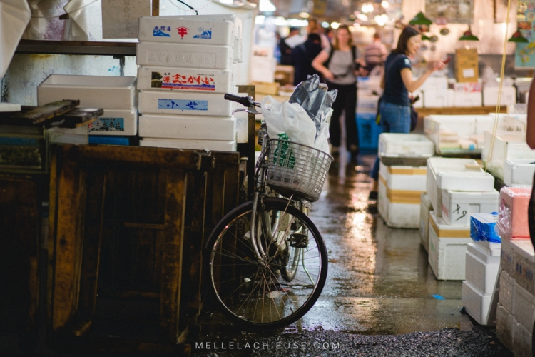 photographe-lyon-japon-tsukiji-marche-aux-poissons-japan-fishmarket-7