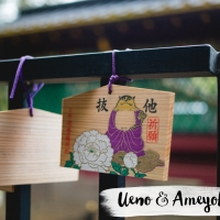 JAPON // Ueno + Ameyoko