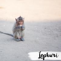 THAILANDE // LOPBURI